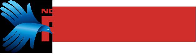Nový Fénix Logo