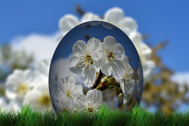 Jaro a Velikonoce | Nový Fénix