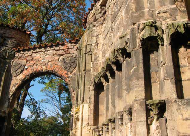 Léčivá síla proudí srdcem starobylé katedrály