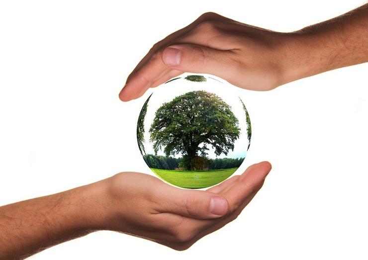 ŽIVOT JE DAR. Julia Roberts mluví za přírodu… | Nový Fénix